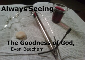 Seeing Goodness